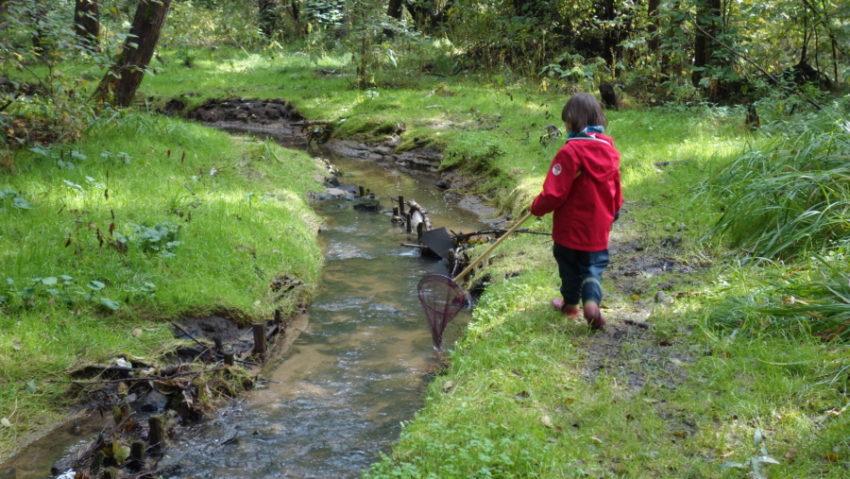 dzieci w naturę