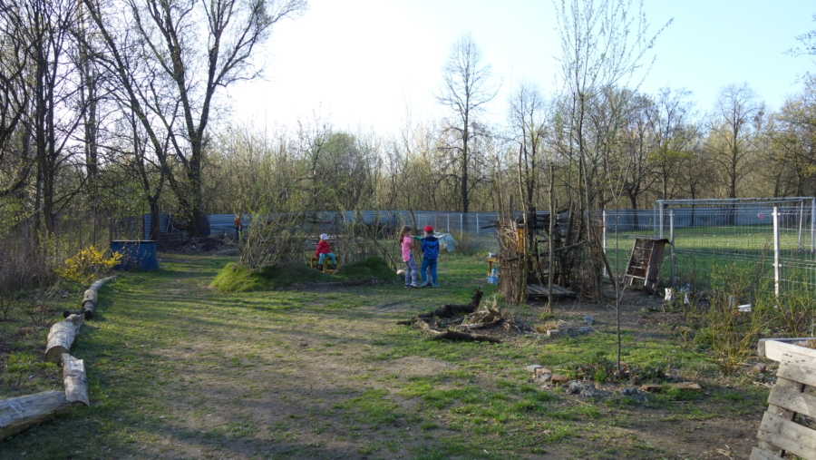 ogród społeczny