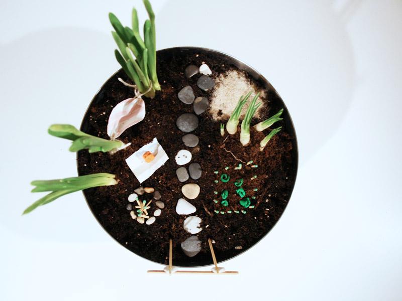 ogród dla elfów