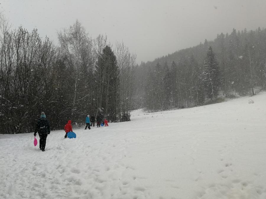 zima leśnych rodzin