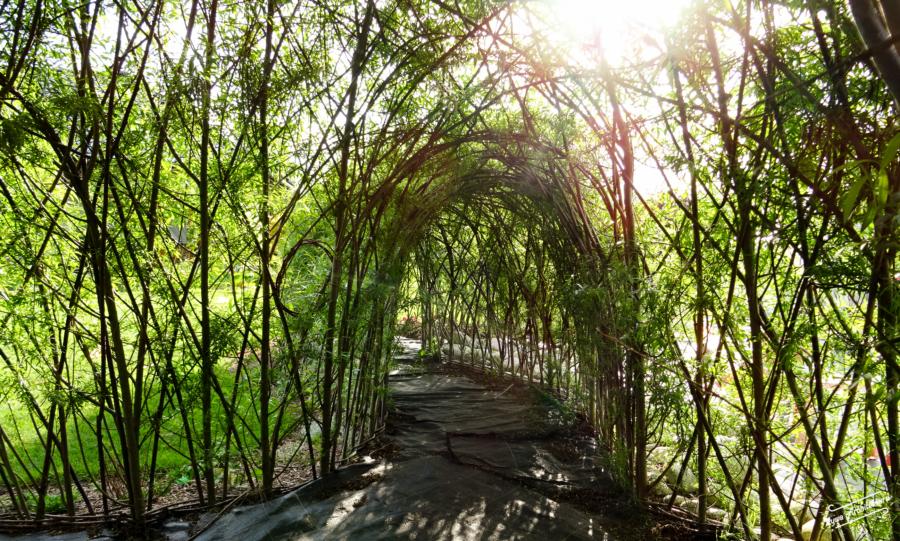 Żywa architektura w ogrodzie zabaw. Tunel i igloo.