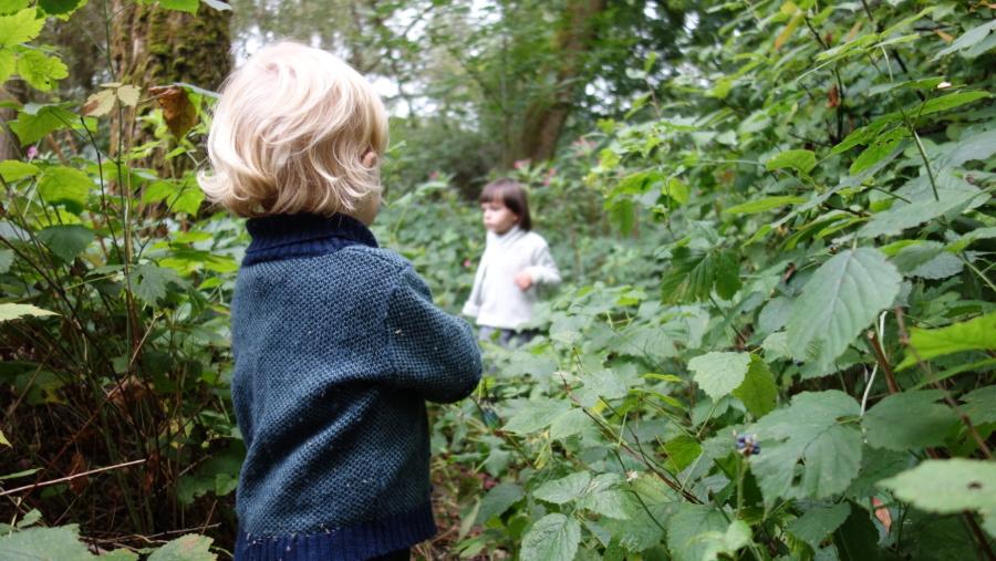 mikrowyprawy z Dzieci w Naturę