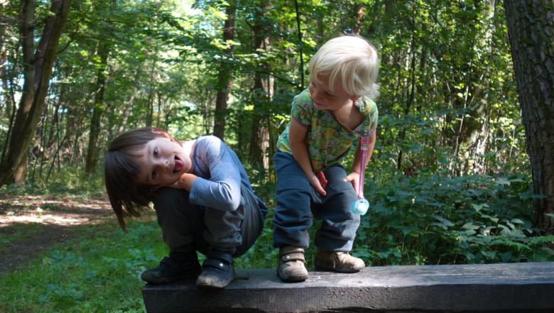 Dzieci podczas spaceru fundacji Dzieci w Naturę